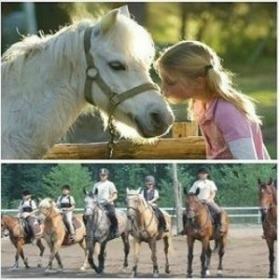 Gyermek lovastábor vakációra, kezdőknek is! 6 nap